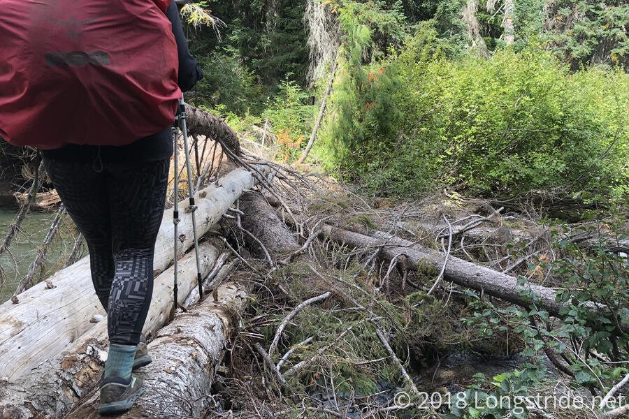 A Sketchy Log Crossing