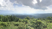 View from Molly's Knob