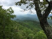 View from Cove Mountain