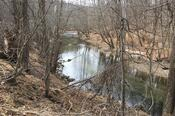 The Patapsco River